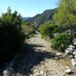 Ruta por calzada romana Ubrique-Benaocaz